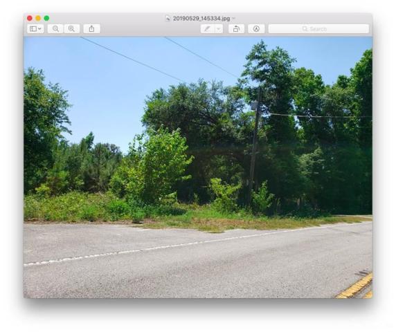 17800 N Highway 329, Reddick, FL 32686 (MLS #425632) :: Rabell Realty Group