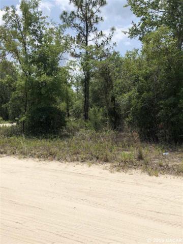 TBD Lot 15 NE 65th Lane, Williston, FL 32696 (MLS #425701) :: Pristine Properties
