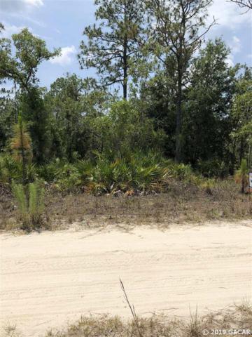 TBD Lot 14 NE 65 Lane, Williston, FL 32696 (MLS #425702) :: Pristine Properties