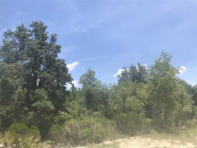0000 NE 93 Lane, Bronson, FL 32621 (MLS #426831) :: Bosshardt Realty