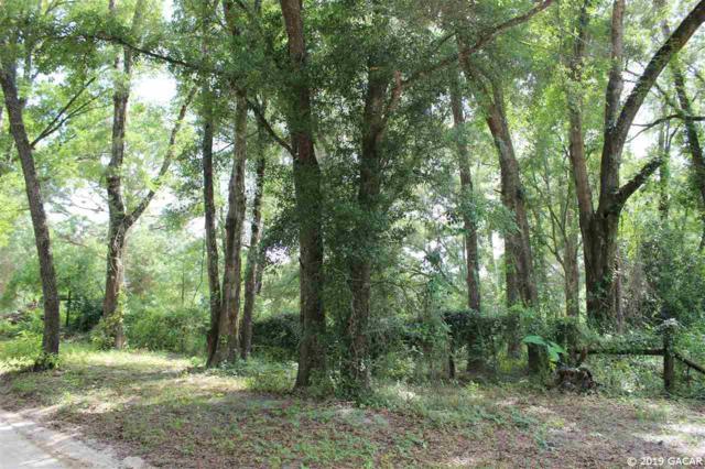 5726 NW 168 Street, Alachua, FL 32615 (MLS #426943) :: Bosshardt Realty