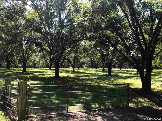 19027 NE State Road 26 Road, Hawthorne, FL 32640 (MLS #428375) :: Bosshardt Realty