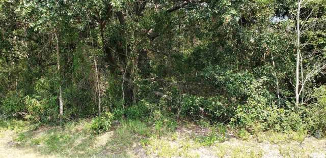 0000 SW 46 Avenue, Newberry, FL 32669 (MLS #428545) :: Bosshardt Realty
