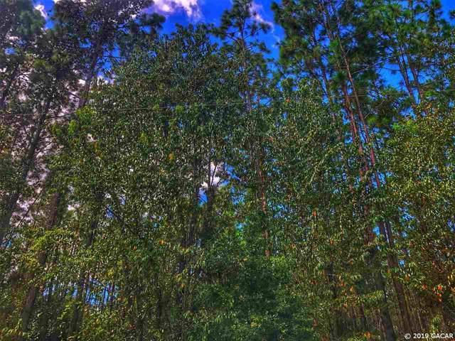 TBD Lot 24 53rd Drive, Branford, FL 32008 (MLS #428814) :: Bosshardt Realty