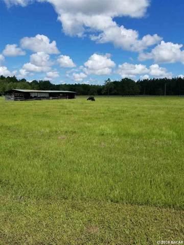 16815 NE 95th Avenue, Waldo, FL 32694 (MLS #429161) :: Better Homes & Gardens Real Estate Thomas Group