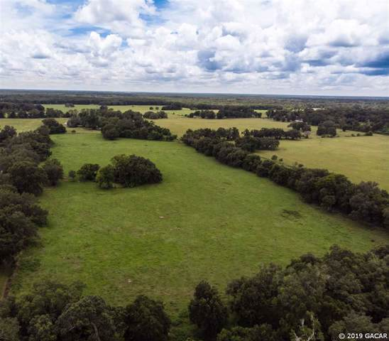SW 170th Street, Newberry, FL 32669 (MLS #429194) :: Pristine Properties