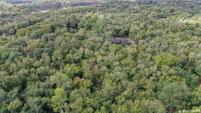 151 Swisher Lakes Trail, Melrose, FL 32666 (MLS #429233) :: Bosshardt Realty