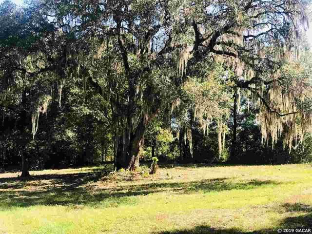 3151 NE 182nd Terrace, Williston, FL 32626 (MLS #429235) :: Pepine Realty