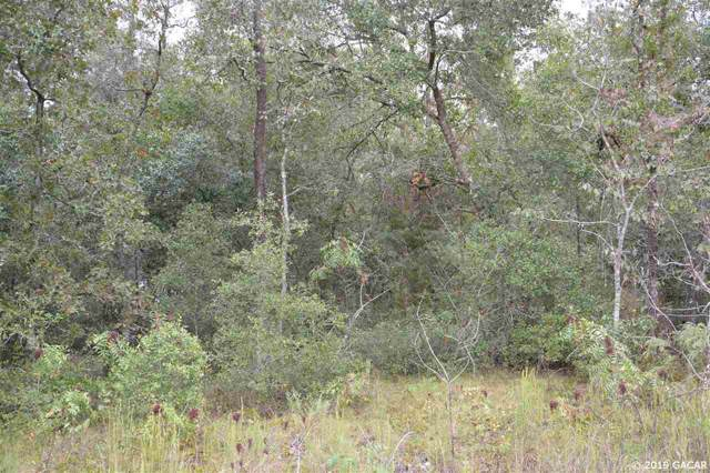 5754 W Overlook Drive, Keystone Heights, FL 32656 (MLS #429249) :: Pristine Properties