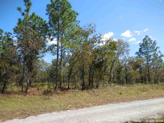 351 NE 131st Avenue, Williston, FL 32696 (MLS #429405) :: Pristine Properties
