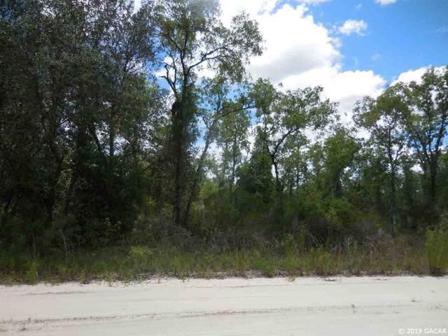 11664 NE 66th Lane, Williston, FL 32696 (MLS #429435) :: Pristine Properties