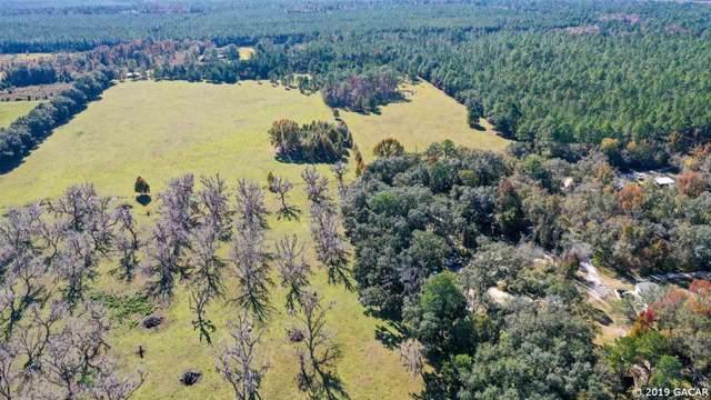 12413 NE County Road 1471, Waldo, FL 32694 (MLS #430483) :: Pepine Realty