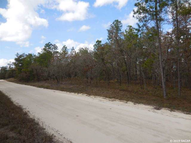 14871 SE 8th Street, Williston, FL 32696 (MLS #430624) :: Bosshardt Realty