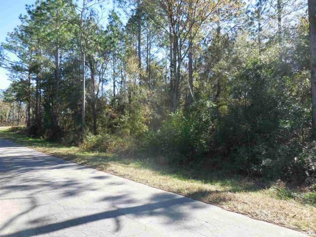 15404 NE 15th Street, Williston, FL 32696 (MLS #430675) :: Bosshardt Realty