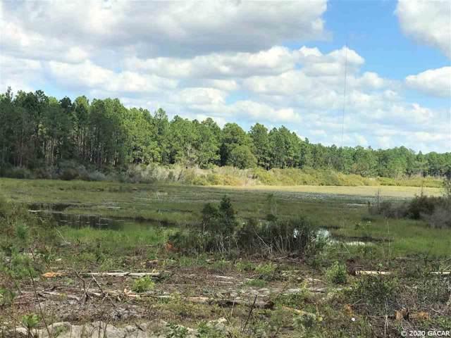 TBD SE County Road 337, Morriston, FL 32668 (MLS #431272) :: Bosshardt Realty