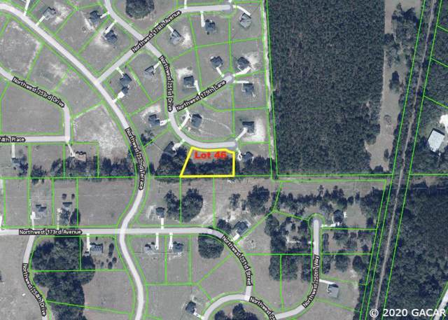 17450 NW 251ST Drive, High Springs, FL 32643 (MLS #431340) :: Better Homes & Gardens Real Estate Thomas Group