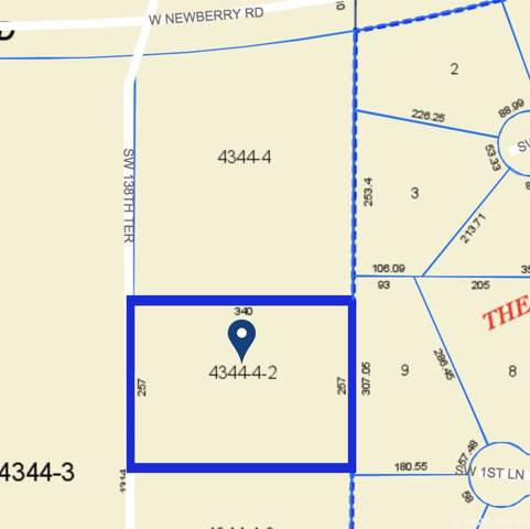 217 SW 138TH Terrace, Newberry, FL 32669 (MLS #431499) :: Rabell Realty Group