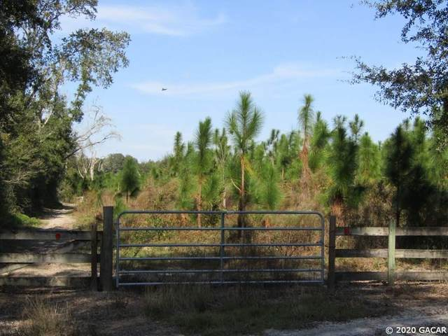 TBD NE Sunrose Road, Mayo, FL 32066 (MLS #432335) :: Pepine Realty