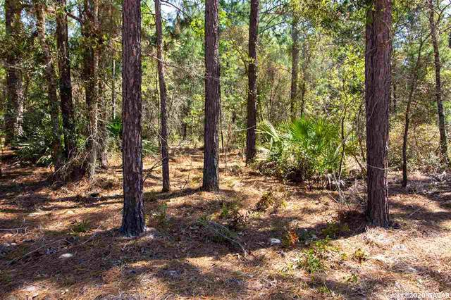 00 Forrest Hille Road, Melrose, FL 32666 (MLS #433202) :: Bosshardt Realty