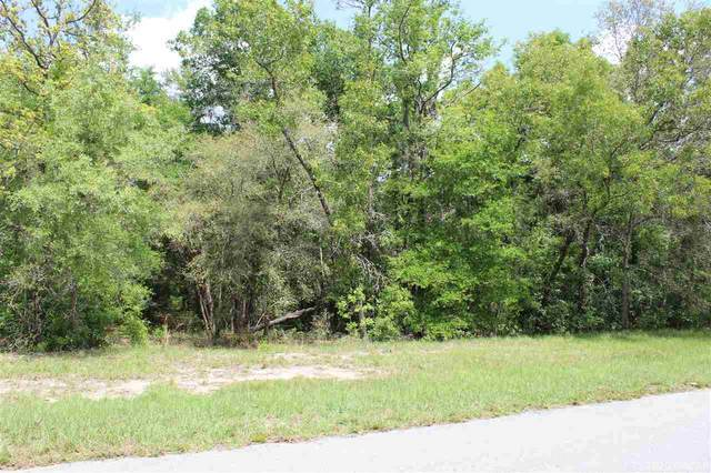 Lot 4 NE 8th Place, High Springs, FL 32643 (MLS #433836) :: Better Homes & Gardens Real Estate Thomas Group