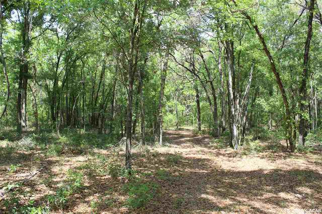 Lot 5 NE 8th Place, High Springs, FL 32643 (MLS #433837) :: Better Homes & Gardens Real Estate Thomas Group