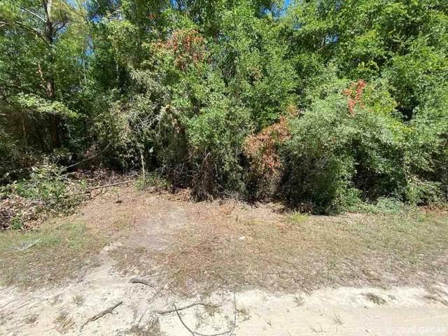 11414 SE 225 Drive, Hawthorne, FL 32640 (MLS #434772) :: Pepine Realty