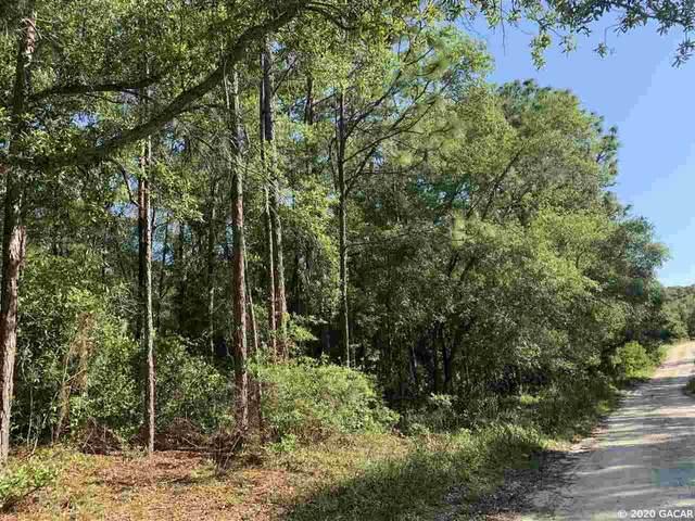 00000 Lake Carleton Drive, Melrose, FL 32666 (MLS #434860) :: Pepine Realty
