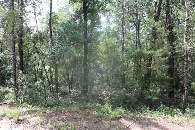 105 Deer Road, Interlachen, FL 32148 (MLS #435302) :: Better Homes & Gardens Real Estate Thomas Group