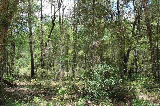 00 Cr 214, Keystone Heights, FL 32656 (MLS #436740) :: Pepine Realty