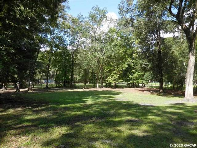 18681 NW 142nd Court Road, Williston, FL 32696 (MLS #437999) :: Rabell Realty Group