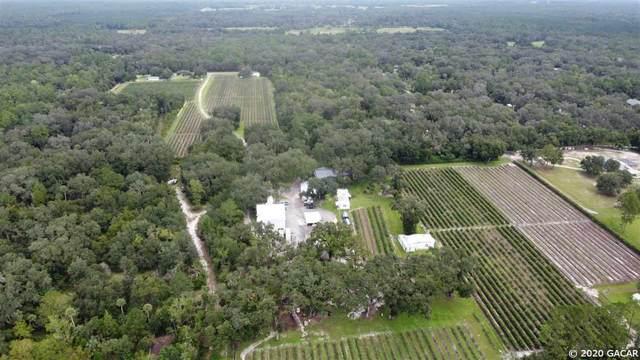 17343 SE Cr 2082, Hawthorne, FL 32640 (MLS #438040) :: Better Homes & Gardens Real Estate Thomas Group