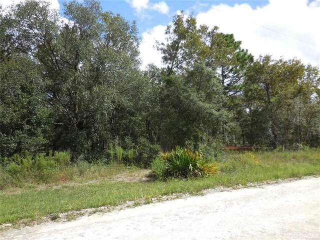 21691 SE 73rd Place, Morriston, FL 32668 (MLS #438251) :: Abraham Agape Group