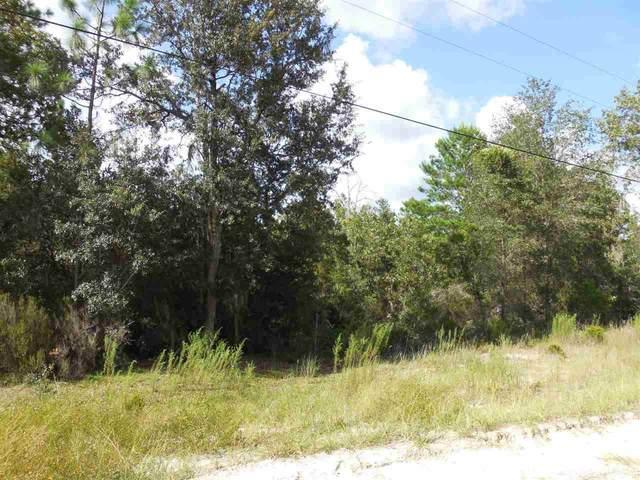 12791 NE 65th Street, Williston, FL 32696 (MLS #438880) :: The Curlings Group