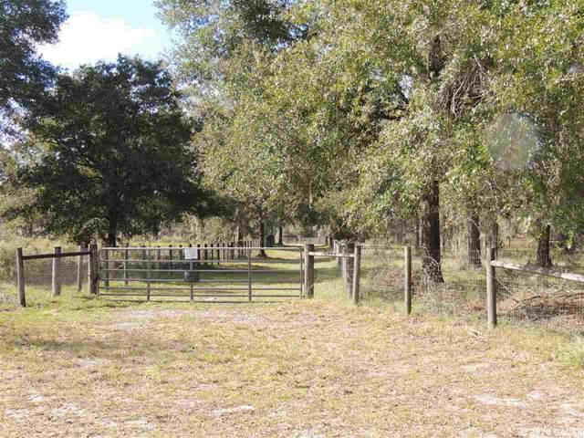 7251 NE 142ND Terrace, Williston, FL 32696 (MLS #439904) :: Better Homes & Gardens Real Estate Thomas Group