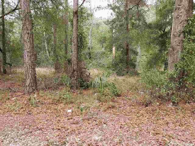 Lot 1 N Main Street, Chiefland, FL 32626 (MLS #441006) :: Better Homes & Gardens Real Estate Thomas Group