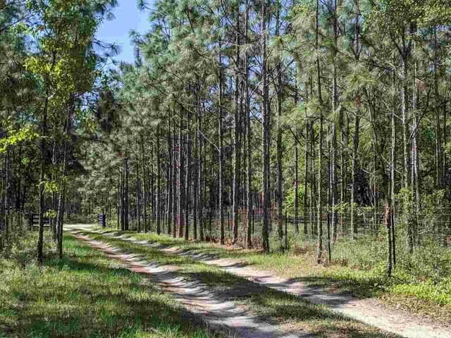 000 SW 88th, Newberry, FL 32669 (MLS #443637) :: Abraham Agape Group