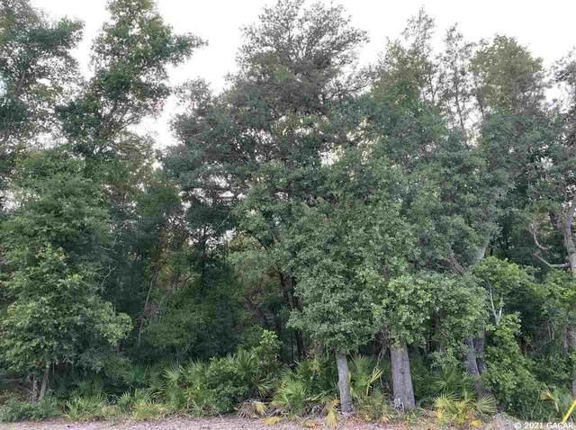 117 Gas Easement Road, Interlachen, FL 32148 (MLS #444938) :: Better Homes & Gardens Real Estate Thomas Group