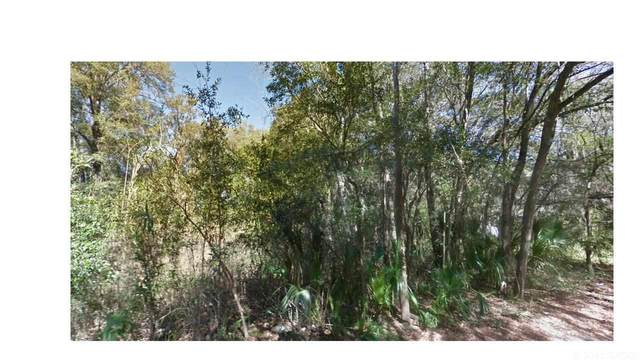 TBD NE 3RD Avenue, Gainesville, FL 32601 (MLS #445008) :: Better Homes & Gardens Real Estate Thomas Group