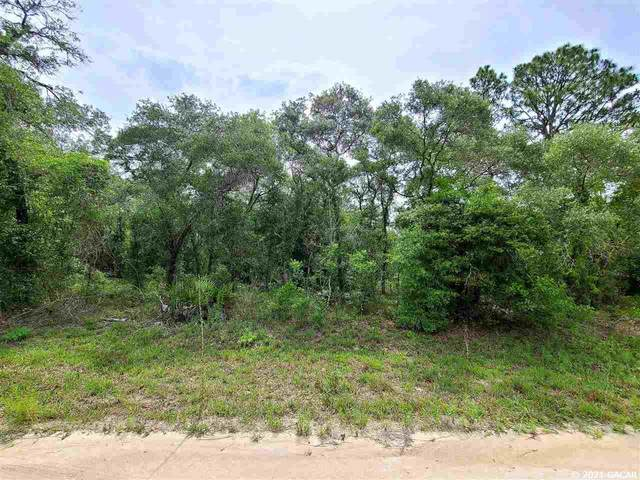 TBD SE 131st Avenue, Morriston, FL 32688 (MLS #445546) :: Better Homes & Gardens Real Estate Thomas Group