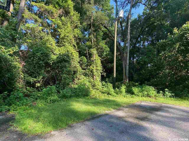 000 NW 235th Way, High Springs, FL 32643 (MLS #446790) :: Rabell Realty Group