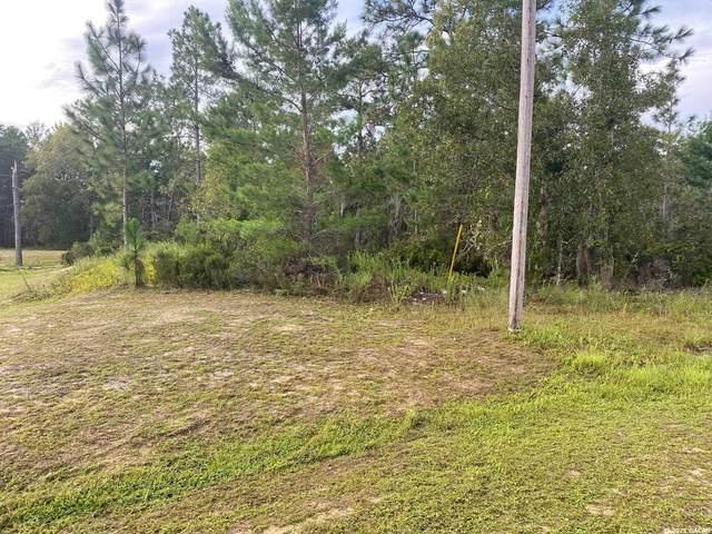 247 Melrose Landing Boulevard, Hawthorne, FL 32640 (MLS #447948) :: Rabell Realty Group