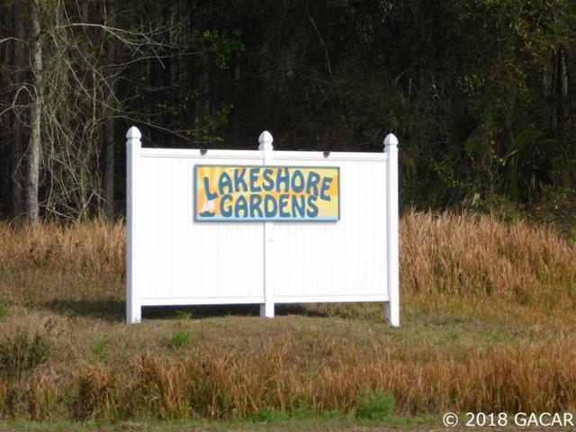 223 SE 223 Terrace, Hawthorne, FL 32640 (MLS #328684) :: Bosshardt Realty