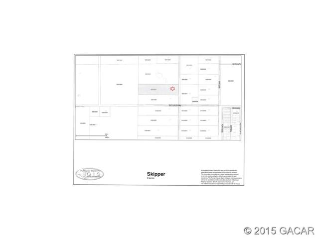 241 Indian Lakes Forest Road, Florahome, FL 32140 (MLS #366595) :: Bosshardt Realty
