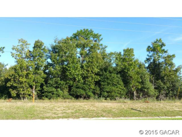 TBD State Road 21 SR, Keystone Heights, FL 32656 (MLS #367297) :: Thomas Group Realty