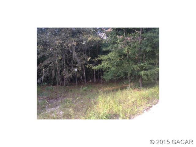 110 Country Living Lane, Melrose, FL 32666 (MLS #367625) :: Thomas Group Realty