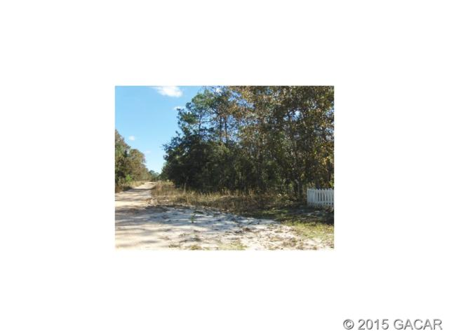 6291 6291 & 6295 Bowdoin Road, Keystone Heights, FL 32656 (MLS #367665) :: Bosshardt Realty