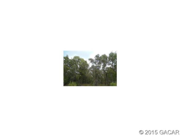 6712 County Rd Autumnwood Ct. CR, Keystone Heights, FL 32656 (MLS #367841) :: Florida Homes Realty & Mortgage