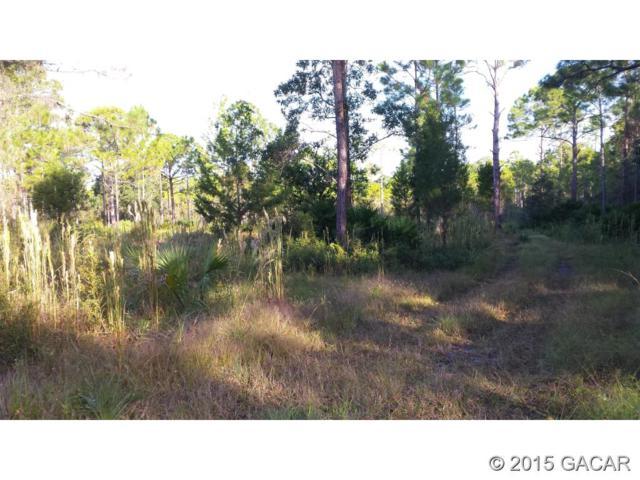 000 SW 101 ST Lane, Cedar Key, FL 32625 (MLS #368542) :: Pepine Realty