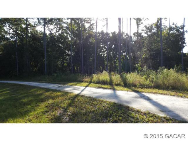 0000 SW 101 ST Lane, Cedar Key, FL 32625 (MLS #368572) :: Pepine Realty