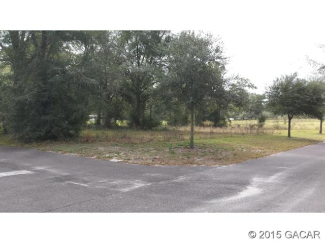 3557 Frederick Avenue, Bell, FL 32619 (MLS #369286) :: Bosshardt Realty